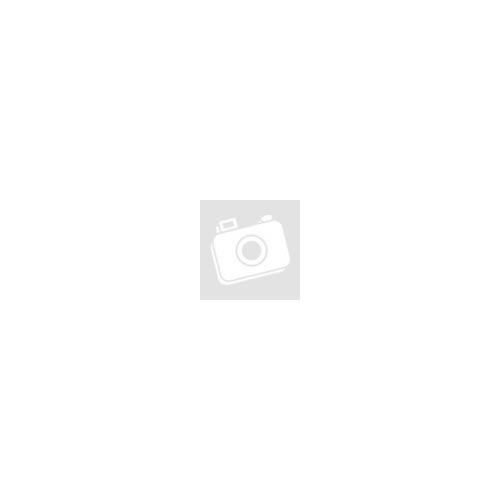 DELPHIN CX Carpath Horgász szék